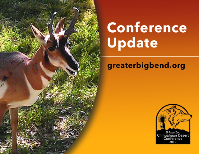 Chihuahuan Desert Conf. promo graphic pronghorn